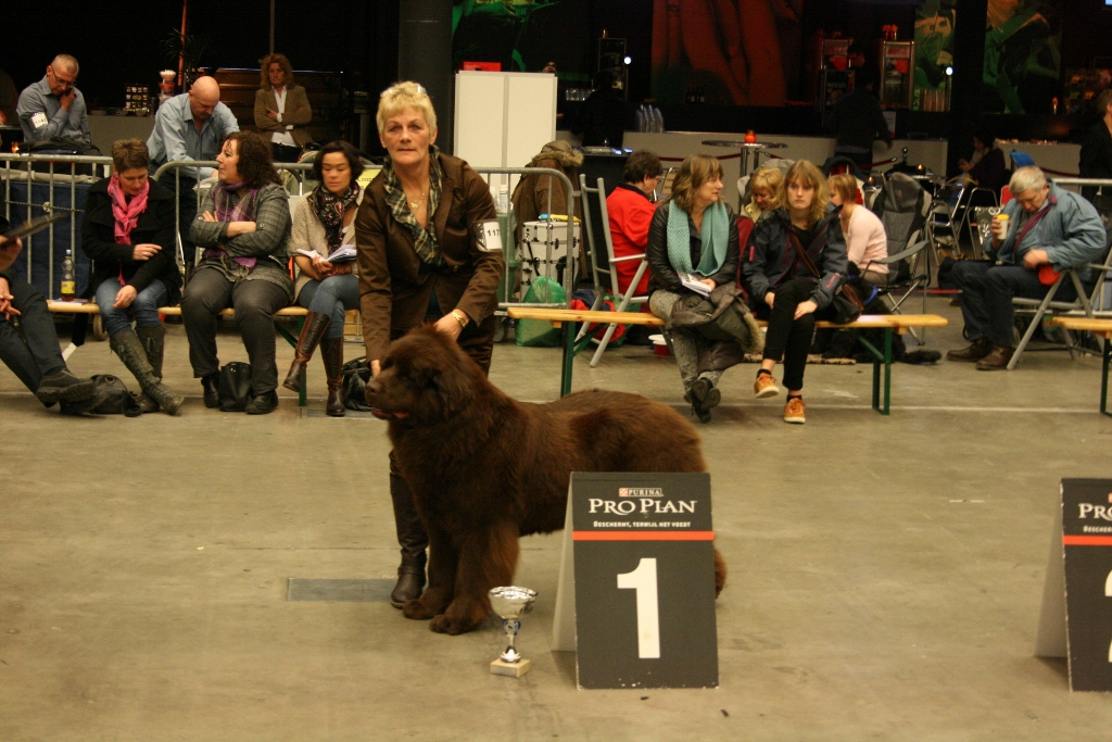 Show in Groningen Keurmeester Mevr.G.Brouwer
